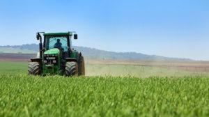 Деятельность современного фермерского хозяйства